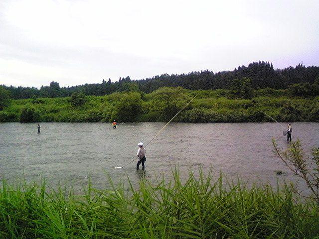 小国川の鮎師