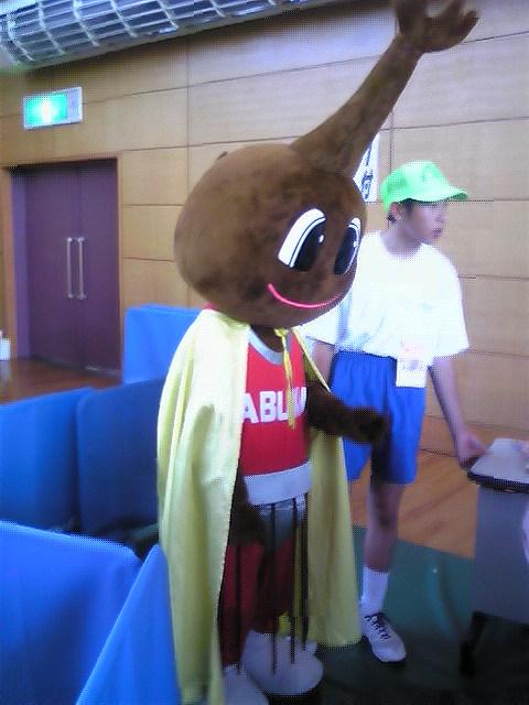 全国かぶとむし相撲大会/中山町