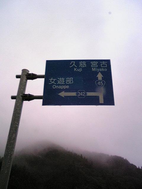 なんとなく左に曲がりた〜い(^_-)<br />  -☆