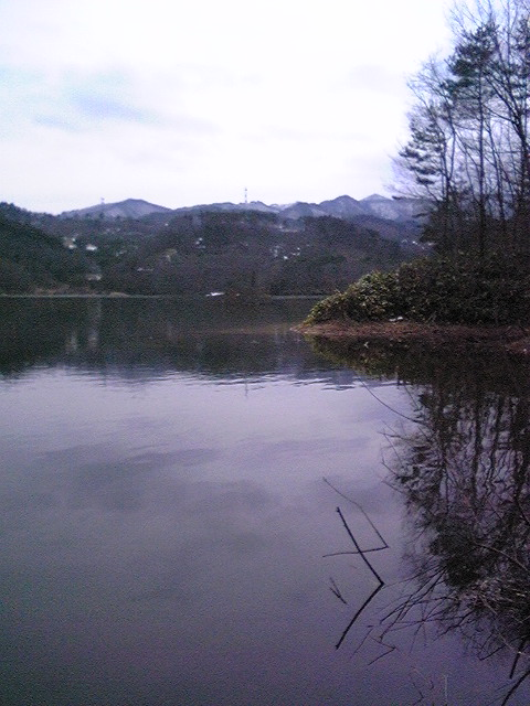 前川ダムだって寒ーぃ