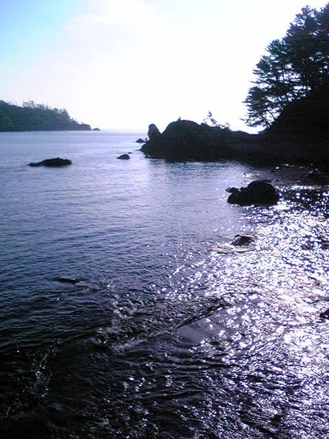 2010POC③気仙沼大島