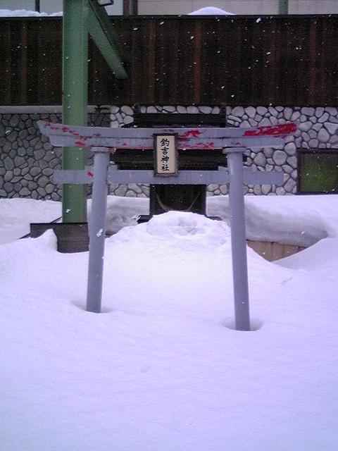 晴天の風「塩黄そば」鶴岡
