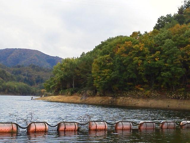 秋の前川ダム(^_^)<br />  いい感じ
